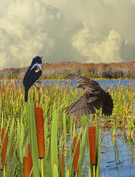 Marsh Bird Digital Art - Black Birds And Cattails by M Spadecaller