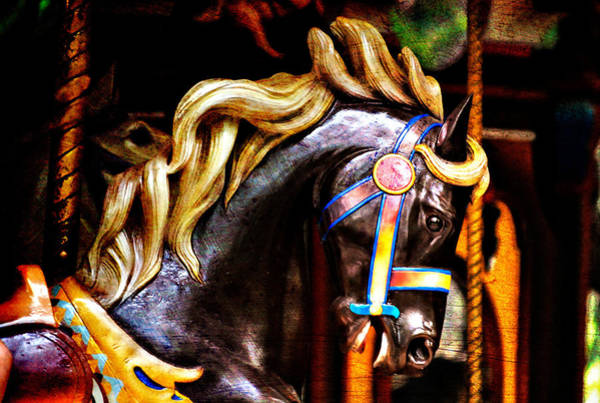 Photograph - Black Carousel Horse by Renee Hong