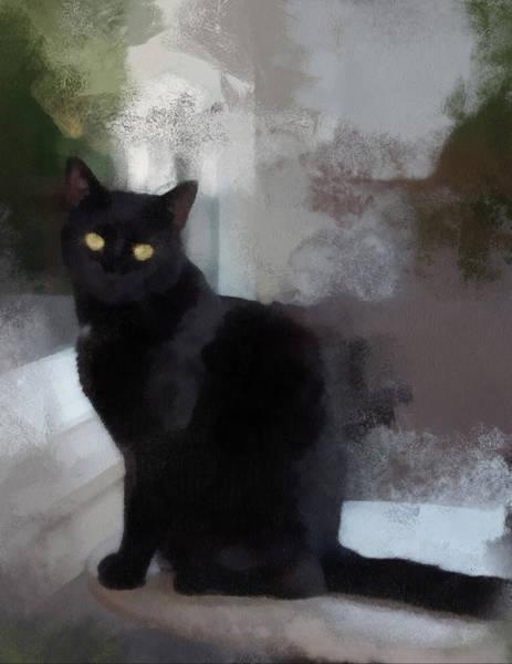 Photograph - Black Cat by Gerry Bates