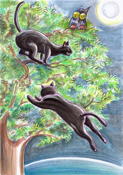 Nocturnal Drawing - Black Cats On A Tree by Loris Bagnara
