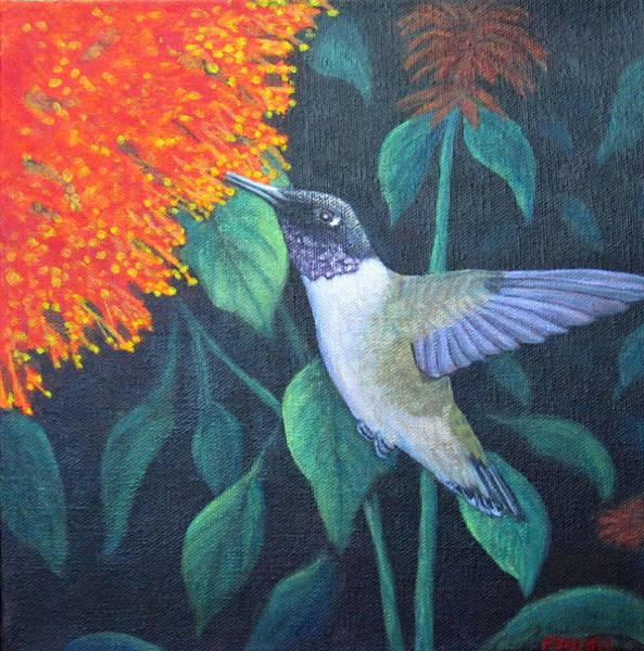 Painting - Black-chinned Hummingbird by Fran Brooks