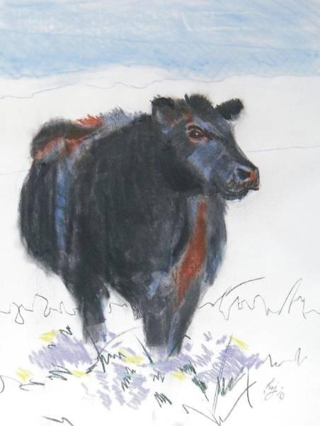 Black Cow Drawing Art Print