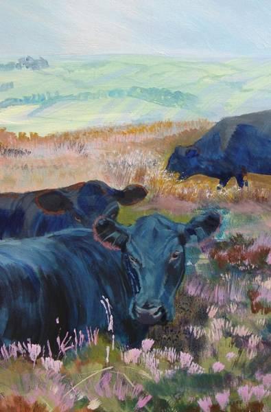 Black Cows On Dartmoor Art Print