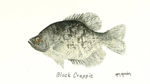 Black Crappie Art Print