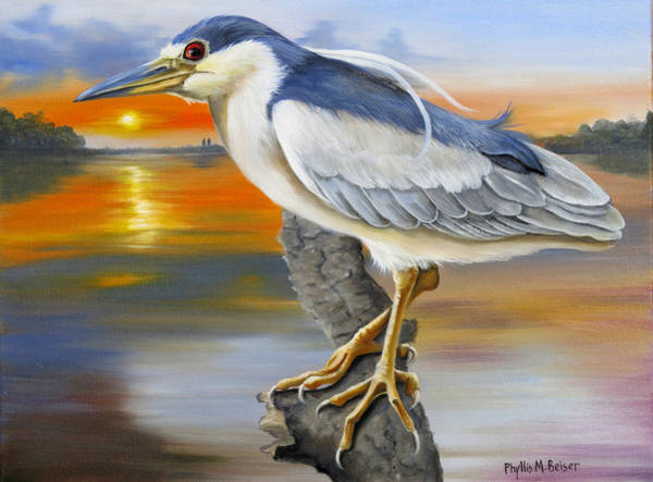 Wall Art - Painting - Black Crowned Night Heron At The Jordan by Phyllis Beiser