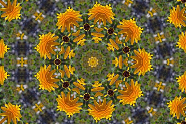 Photograph - Black Eyed Susan Mandala #1 by Beth Sawickie