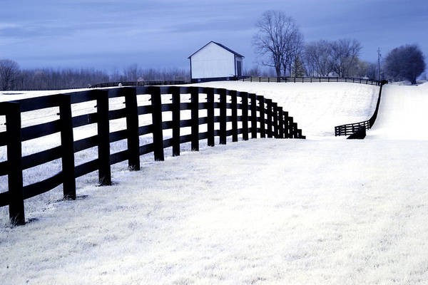Photograph - Black Fence At A Horse Farm In West Michigan A Color Infrared Photograph by Randall Nyhof
