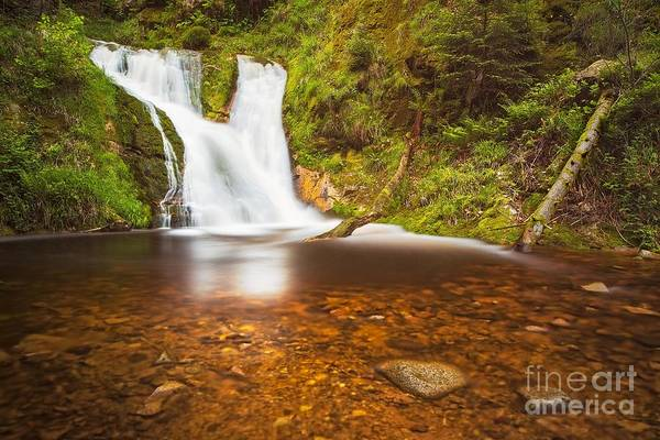 Wall Art - Photograph - Black Forrest Waterfall by Maciej Markiewicz