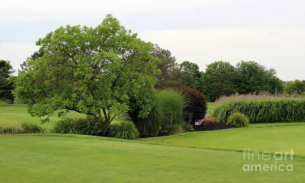 Photograph - Black Hawk Golf Course Putting Area by Karen Adams