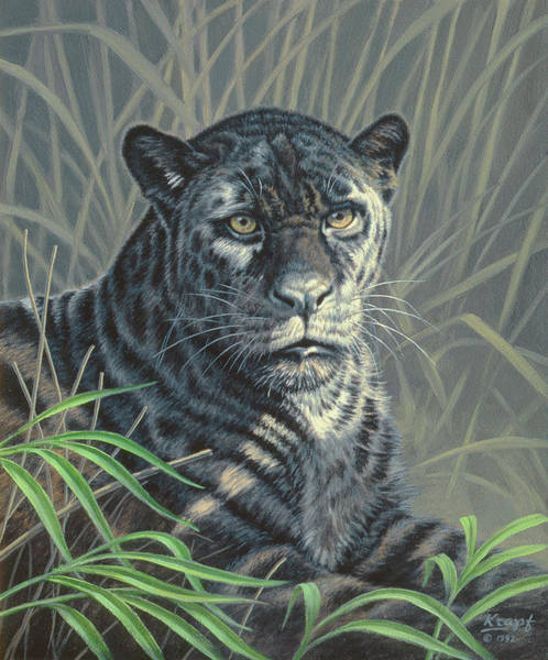 Jaguar Painting - Black Jaguar by Paul Krapf