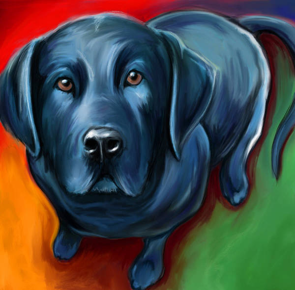 Sad Digital Art - Black Lab by David Kyte