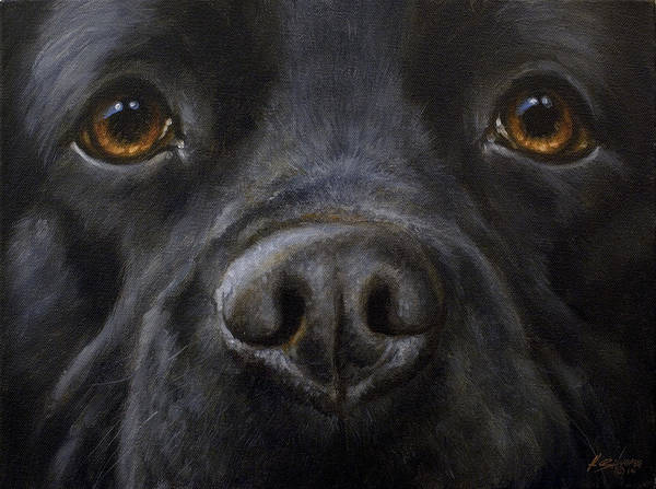 Painting - Black Labrador Close Up by John Silver