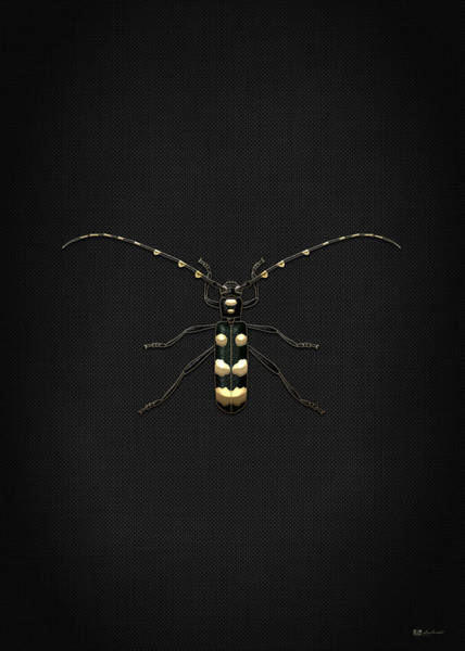 Digital Art - Black Longhorn Beetle With Gold Accents On Black Canvas by Serge Averbukh