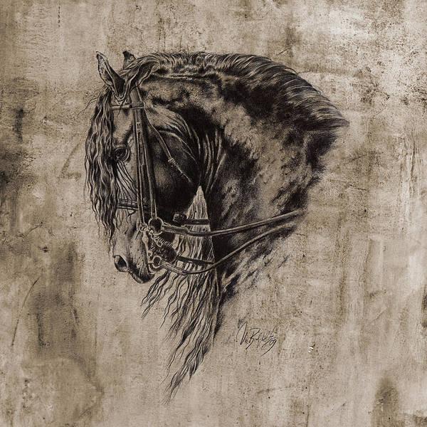 Friesian Drawing - Black Mystic by Art Imago