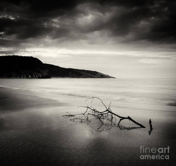 Photograph - Black Sea by Yucel Basoglu