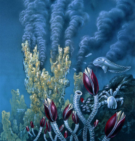 Vent Photograph - Black Smoker Vent by David A. Hardy/science Photo Library