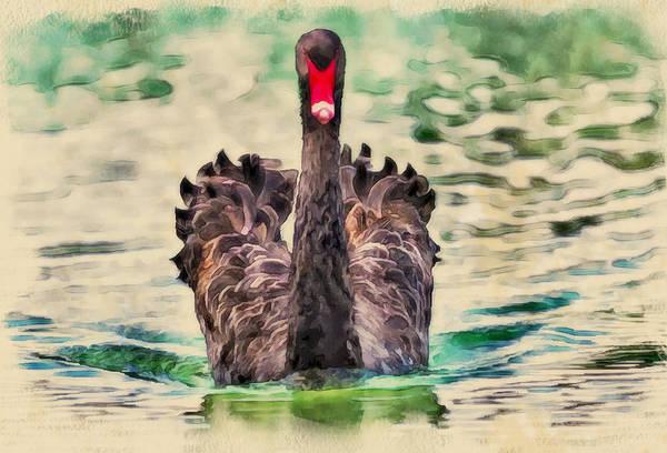 Great Lakes Digital Art - Black Swan by Yury Malkov