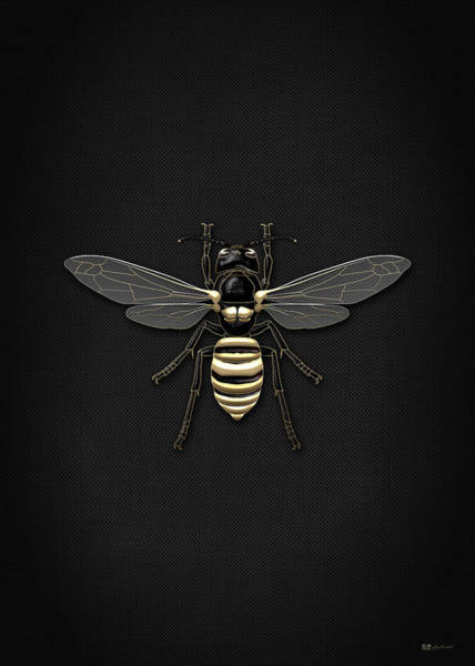 Digital Art - Black Wasp With Gold Accents On Black Canvas by Serge Averbukh