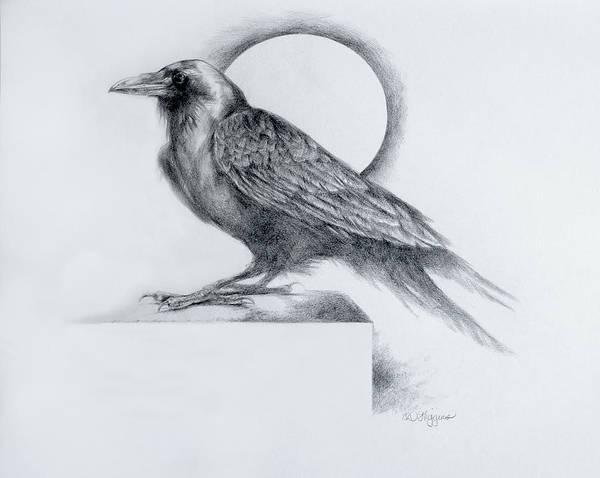 Raven Drawing - Black Watch by Derrick Higgins