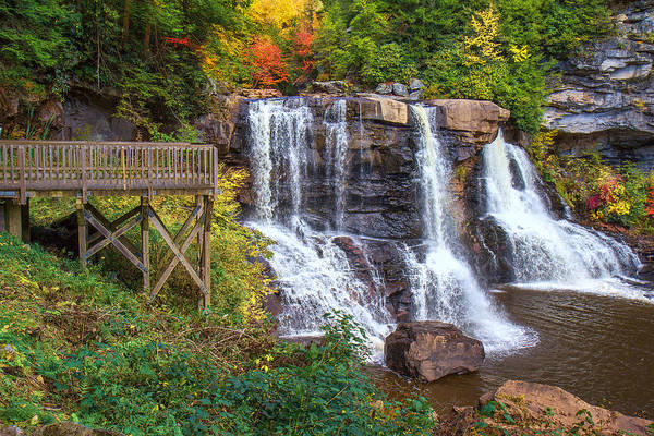 Photograph - Blackwater Falls State Park by Mary Almond