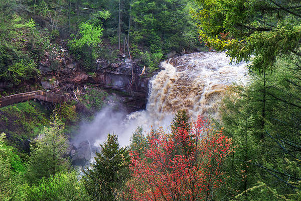 Photograph - Blackwater Falls State Park Overlook by Mary Almond
