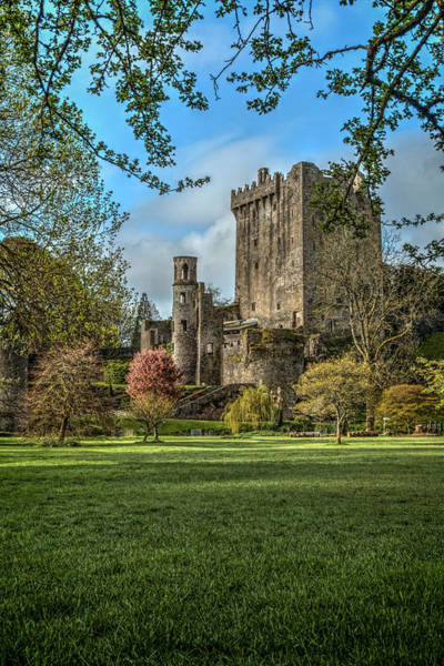 County Cork Wall Art - Photograph - Blarney Castle by Pat Eisenberger