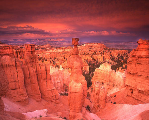 Photograph - Blazing Bryce Sunset by Ray Mathis