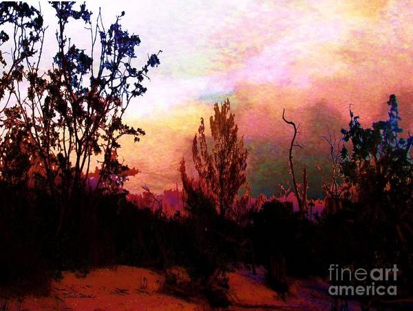 Mangroves Digital Art - Blazing by Doris Wood