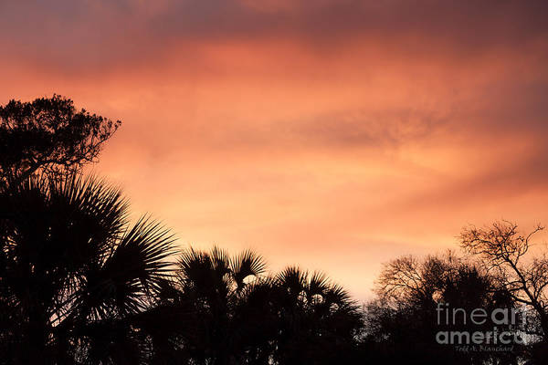 Photograph - Blazing Sunset by Todd Blanchard