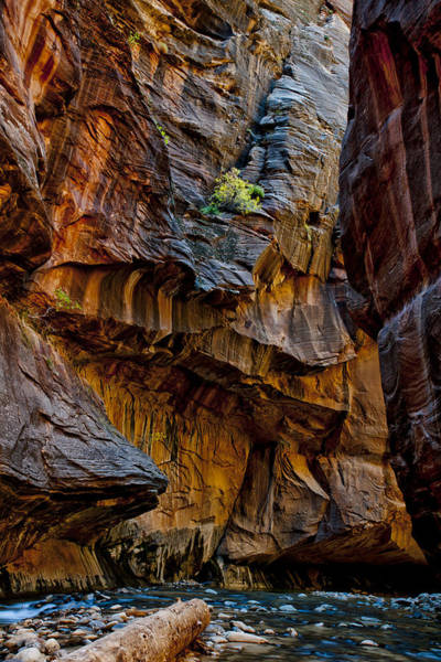 Wall Art - Photograph - Bleu Virgin River by Juan Carlos Diaz Parra