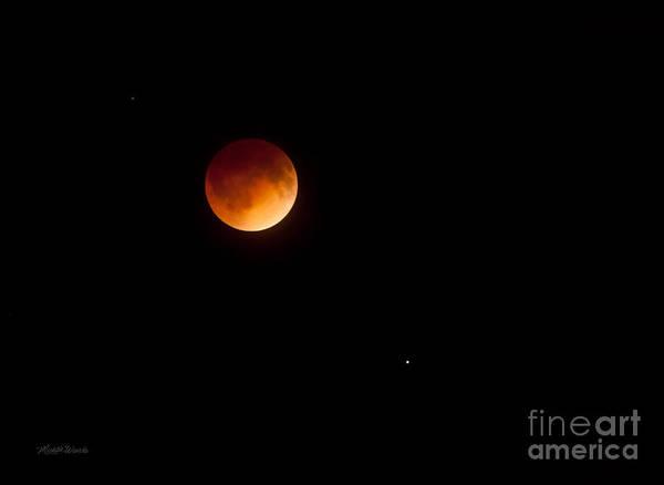 Photograph - Blood Moon Eclipse S Florida 0315am April 15 2014 by Michelle Constantine