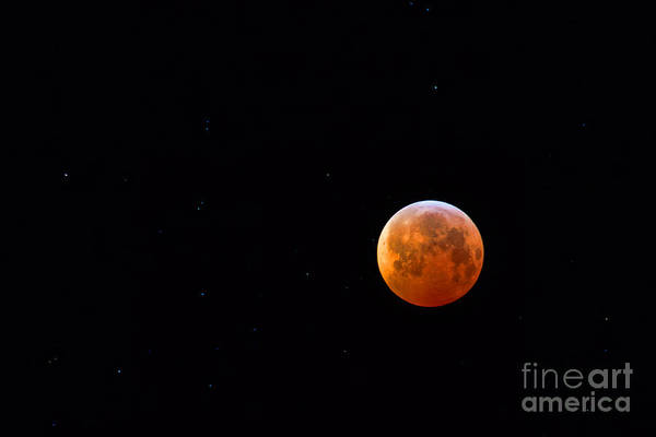 Photograph - Blood Moon by Jim Garrison
