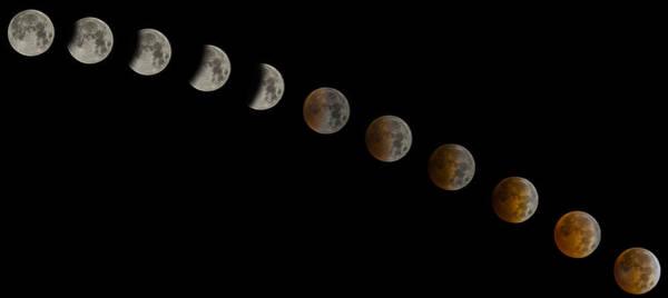 Blood Moon Wall Art - Photograph - Blood Moon Eclipse by Jeremy Jensen