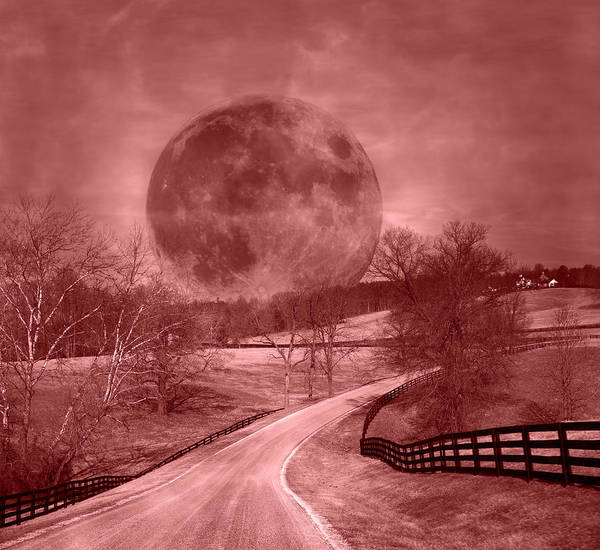 Blood Moon Wall Art - Photograph - Blood Moon One Of Two by Betsy Knapp