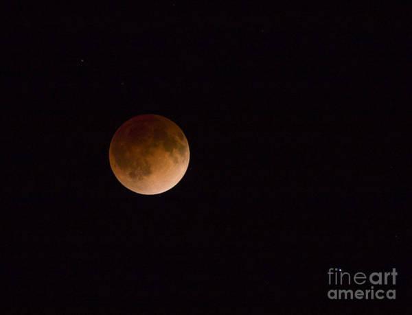 Photograph - Blood Moon by Steven Ralser