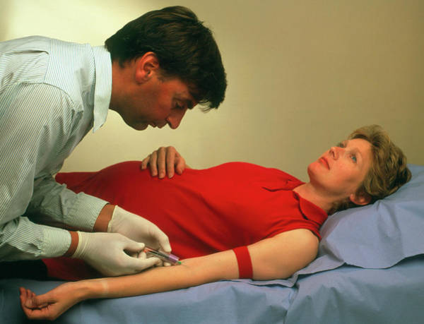 Pregnant Photograph - Blood Sample Being Taken From Pregnant Woman by Saturn Stills/science Photo Library