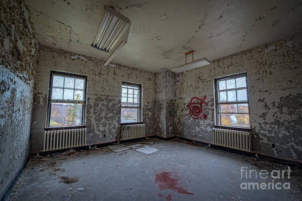 Nikon D800 Wall Art - Photograph - Blood Stain by Michael Ver Sprill