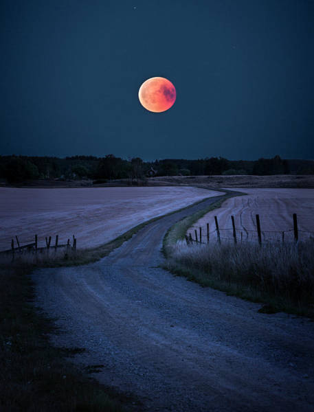 Full Moon Wall Art - Photograph - Bloodmoon 2018 by Christian Lindsten