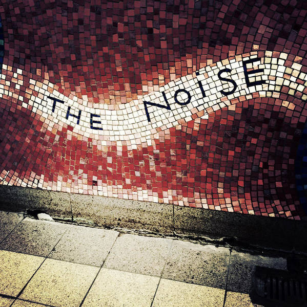 Photograph - Blooming - The Noise by Natasha Marco