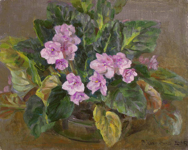 Violet Painting - Blossoming Violet by Victoria Kharchenko
