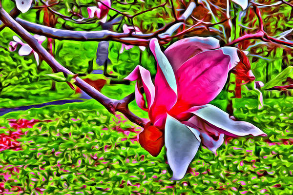 Photograph - Blossoms In The Park by Alice Gipson