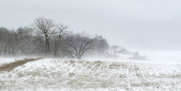 Photograph - Blowing Snow Over Fields And Forest by Lynn Hansen