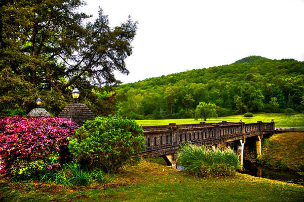 Photograph - Blowing Spring Park by David Patterson