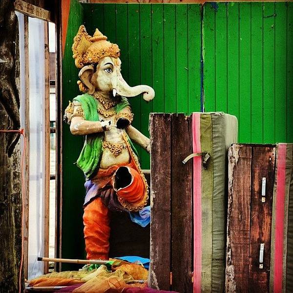 Charity Wall Art - Photograph - Bluberg, Holland Ganesh Is Widely by Samantha Charity Hall