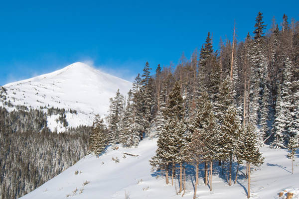 Photograph - Blue And White Colorado Winter by Cascade Colors