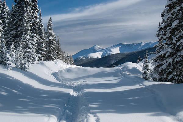 Photograph - Blue And White Colorado Winter Landscape by Cascade Colors