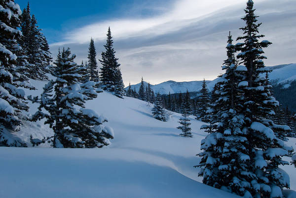 Photograph - Blue And White Winter by Cascade Colors