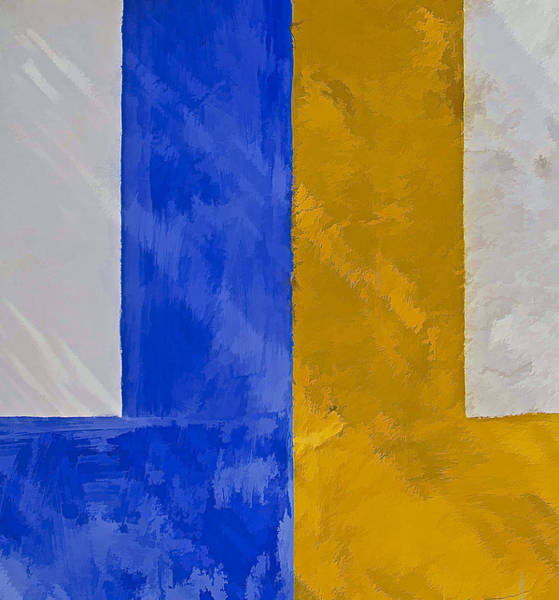 Photograph - Blue And Yellow by David Letts