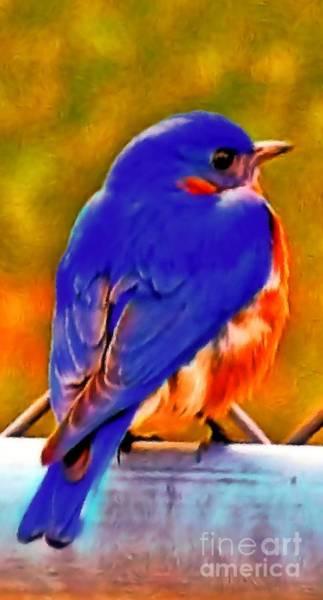 Blue Beauty 2013 Art Print