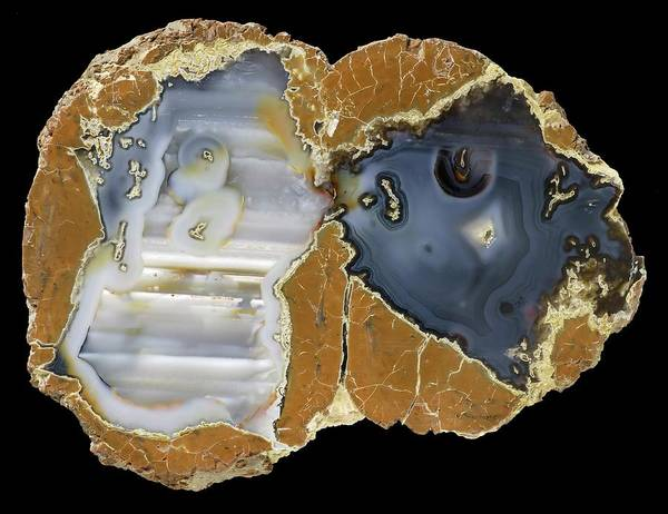Geodes Photograph - Blue Bed Thunder Egg Agate by Natural History Museum, London/science Photo Library